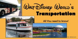 Disney-World-Transportation