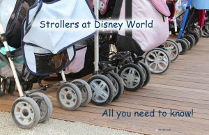 strollers-at-disney-world