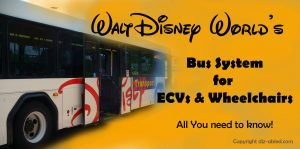 Disney-World-Bus-System-for-handicapped-ECV-wheelchair-users-2
