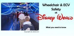 ecvs-and-wheelchairs-safety-at-disney-world