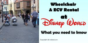 Renting-a-Wheelchair-or-ECV-at-Disney-World