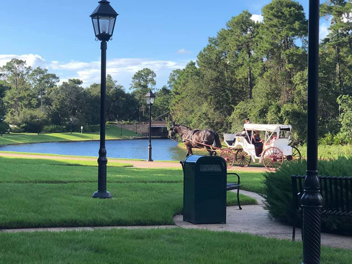 Port Orleans French Quarter Horse and Carriage Ride
