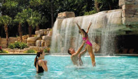 Swan-Dolphin_pool