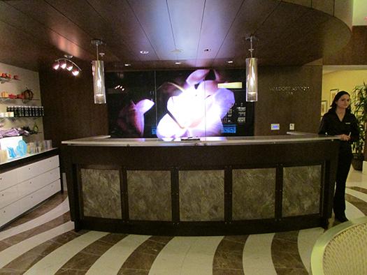 Waldorf Astoria Orlando spa