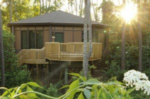 Disney World Treehouse Villas