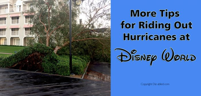 More tips for riding out hurricanes at Disney World