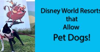 Disney World Resorts that Allow Dogs