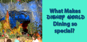 what makes disney world dining so special
