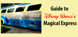 Magical Express Bus at Disney World