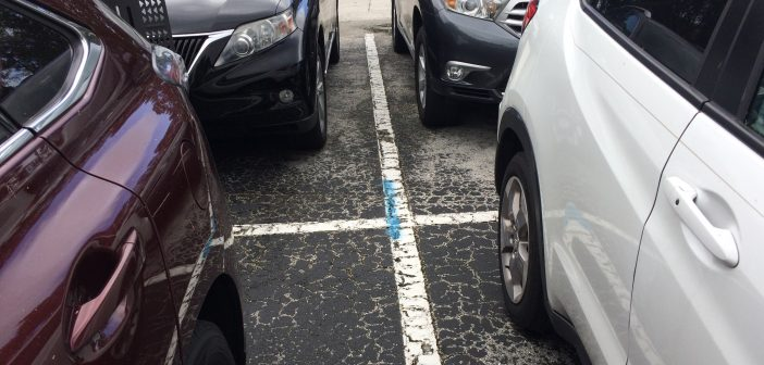 parking at walt disney world charges