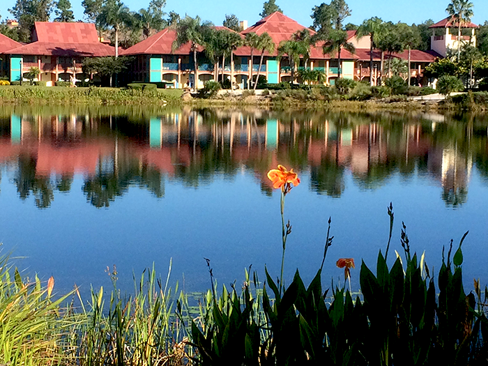 Coronado Springs before construction at Disney World