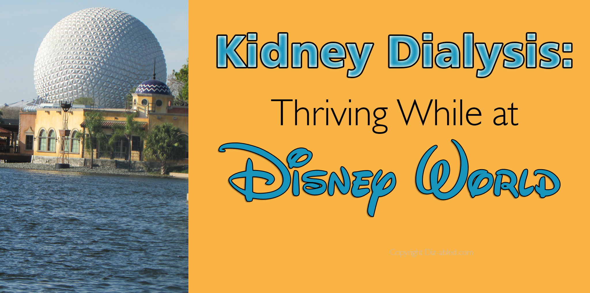 Kidney Dialysis: Thriving While at Disney World - Walt