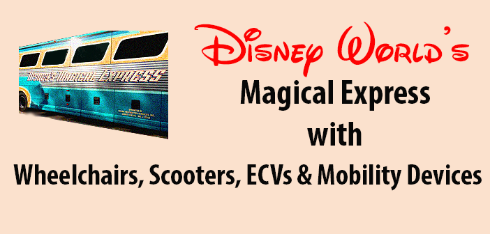 Magical Express Disney World Airport Bus