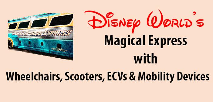 Magical Express Disney World Airport Bus
