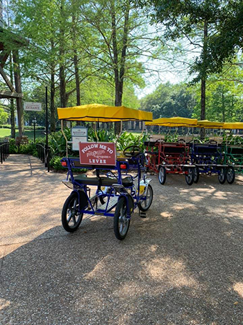 Port orleans riverside bike rental Surry