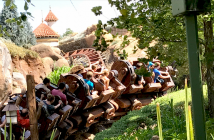 Managing Back, Neck and body pain at Disney World