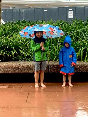 Disney purchased umbrella