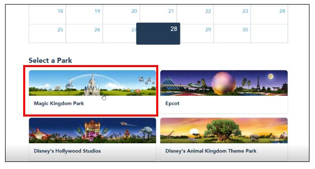 Disney park pass system 5