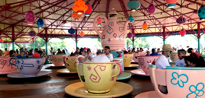 Mad Tea Cup in Magic Kingdom
