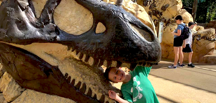 Boneyard in Animal Kingdom in Disney World