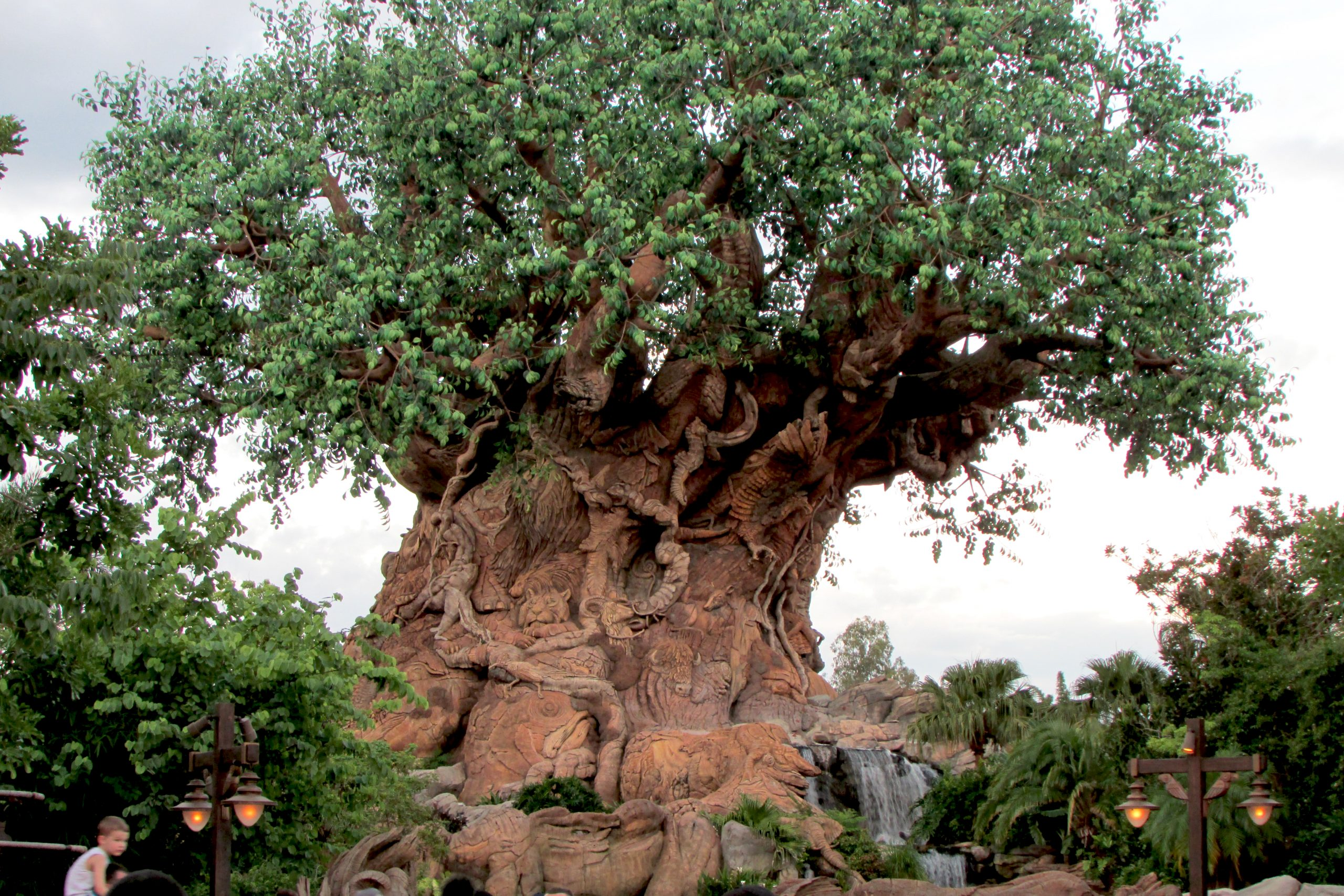 It's Tough to be a Bug is inside The Tree of Life in Animal Kingdom